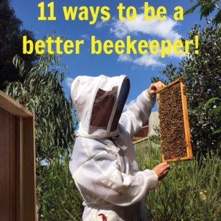 11 ways to be a better beekeeper!