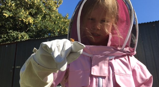 Bees Help Kids Care, Feel, Think and Grow