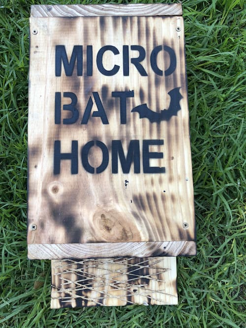 bat box for sale