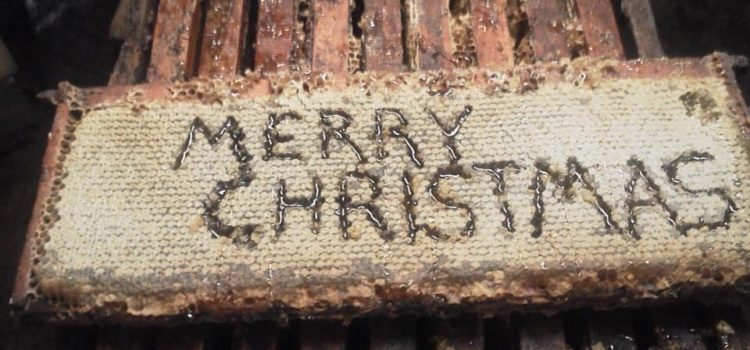 Christmas Love And Bees