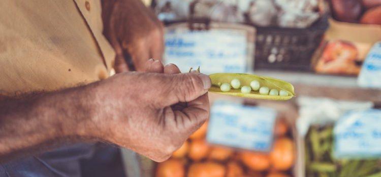 Food: A Spiritual Exchange