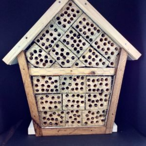 Native Bee Hotel For Sale