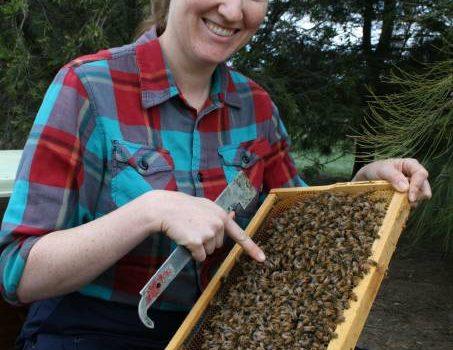 Liz Frost Bees